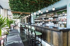 Inside Sydney's new Cuban-themed cocktail bar, Hacienda: Hacienda was created by the team that brought us cool Sydney venues such as Della Hyde, The Butler and Bondi Hardware comes a new bar