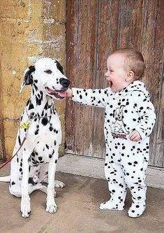 Things that make you go AWW! Like puppies, bunnies, babies, and so on. A place for really cute pictures and videos! Dogs And Kids, Animals For Kids, Animals And Pets, Nature Animals, Cute Funny Animals, Cute Baby Animals, Cute Puppies, Dogs And Puppies, Dalmatian Dogs