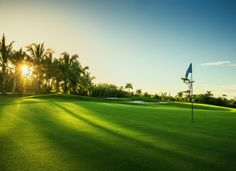 The US Golf Association announced entries Thursday for the 117th US Open, to be staged June 15-18 in Wisconsin.
