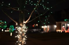 Outdoor Christmas Lights Photo By Michael Kappel