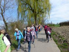 Wanderung 29. März: Wanderer und Velofahrer begegnen sich