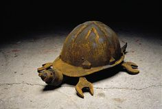 Limitless Ideas---hard hat turtle