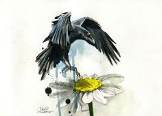 CAMOMILE CROW by ~lora-zombie on deviantART
