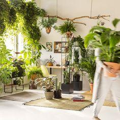 House Vintage Interior Plants 47 Ideas For 2019 Bohemian Living, Boho, Feng Shui, Modern Pool House, Exterior Siding Colors, Modern Paint Colors, House Plan With Loft, Interior Plants, Commercial Interior Design