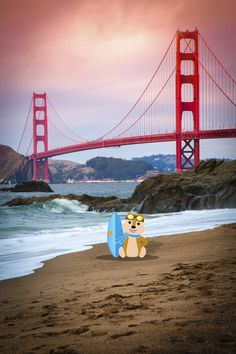 SAN FRANCISCO, CA  - Checking the surf at Baker Beach, in San Francisco.  Check out Hipmunk to search thousands of hotels and save up to 60% on your next hotel.