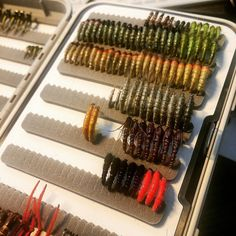 Slugging away at my new C&F nymph box. With 752 slots i've got some ways to go. #flytying #cfdesign