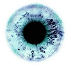 human eye, macro, by Rankin (Eyescapes series)