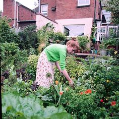 Alys Fowler in the process of preparing our lunch in Birmingham. Her garden is 90% edible, a dream! Piece written by @katedobrien and beautifully captured by @julia__grassi for issue 5 in 2014