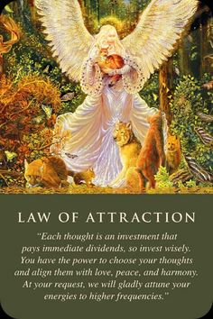 Law of Attraction angel  #angels #lawofattraction