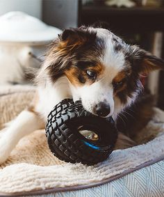 Loving this Jingle X-Tire Ball on #zulily! #zulilyfinds