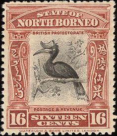 Rhinoceros Hornbill stamps - mainly images - gallery format
