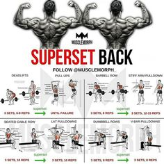 superset back back workout bodybuilding gym musclemorph musclemorphsupps…. – Hobbies paining body for kids and adult Fitness Workouts, Gym Workout Tips, Weight Training Workouts, Fitness Motivation, Traps Workout, Workout Plan For Men, Lifting Motivation, Workout Plans, Big Back Workout