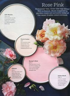 Paint Palette – Rose Pink Pink hues inspired by garden roses. Paint Colors Used: Soft Muslin by Behr Peach Cooler by Benjamin Moore Bunny's Nose by Olympic Odessa by Ace … Read Colour Schemes, Color Combos, Colour Palettes, Wall Colors, House Colors, Interior Paint Colors, My New Room, Color Pallets, House Painting