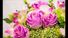 Send Flowers To Gurgaon by buy flower at lowest price online florist in gurgaon, florist in gurgaon, same day flowers delivery gurgaon, midnigh services also available. Organic Gardening, Gardening Tips, Share Pictures, Bloom Blossom, Send Flowers, Bouquet Flowers, Spring Blooms, Flower Pots, Pink And Green