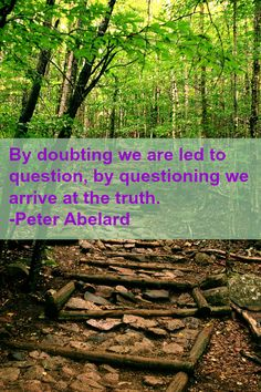 By doubting we are led to question, by questioning we arrive at the truth. -Peter Abelard