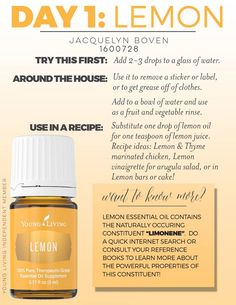 Copaiba essential oil uses ~ Young Living ~ Premium Starter Kit ~ Rayna Allin ~ Member ~ Lifestyle RevOILution Copaiba Essential Oil, Lemon Essential Oils, Essential Oil Uses, Essential Oil Diffuser, Copaiba Oil, Young Living Oils, Young Living Essential Oils, Oils For Life, Living Essentials