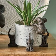 Set of three brown resin elephant potrisers . These lovely little elephant pot risers will sit under any flower or pot plant or indeed candle holder or storage pot . They look amazing particularly with any green exotic faux or real houseplants . Elephant Plant, Small Elephant, Little Elephant, Elephant Stuff, Elephant Room, Elephant Bathroom Decor, Elephant Home Decor, Elephant Decorations, Decorative Accessories
