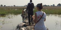 Sudán del Sur: Los desplazados por los combates en Wau Shilluk, sin acceso a la atención médica de emergencia | La mayoría de los 20,500 habitantes de Wau Shilluk huyó hacia a la selva el 25 de enero, cuando comenzaron los enfrentamientos. Los enfermos y heridos en la región tienen dificultades para acceder al hospital de MSF en la región y las nuestros equipos móviles deben superar grandes desafíos para poder llegar a estas comunidades vulnerables.