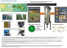 Algae biodiesel clean technology is ready now for commercial production. READ FULL ARTICLE CLICK HERE www.ihumanevolution.com/Algae_Renewable_Energy.html    If a national bi-partisan initiative were focused on algae oil development, it could be sold fo Try Saving Energy this winter:   http://www.power4home.com/MakeElectricity.php?hop=bjw59click