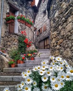 collection of images: fotografia Beautiful Streets, Beautiful World, Beautiful Gardens, Beautiful Sunset Pictures, Nature Pictures, Places Around The World, Around The Worlds, Wonderful Places, Beautiful Places