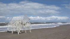 テオ・ヤンセンが、風の力で動く「ストランドビースト」に見る夢   « WIRED.jp