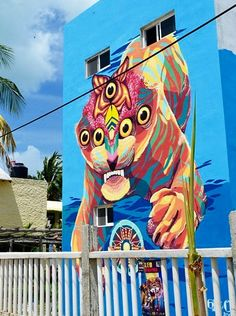 by Gleo in Holbox, Mexico, 6/15 (LP)