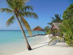 Thulhagiri Island Resort - Malediwy, Nord Male Atoll Paradis, Beach Bum, Outdoor Furniture, Outdoor Decor, Bali, Tropical, Ocean, City, Vacation