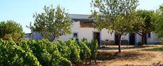 Monte da Casteleja Winery in Algarve, Portugal