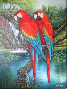 Bird Pictures, Pictures To Paint, Colorful Pictures, Tropical Art, Tropical Birds, Bird Painting Acrylic, Watercolor Paintings, Oil Pastel Drawings, My Drawings