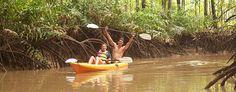 Playa Nicuesa Rainforest Lodge, Kayaking
