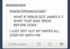 Bros before Does! The Marauders Harry Potter Potterheads Harry Potter Marauders, Harry Potter Jokes, Harry Potter Fandom, The Marauders, Hogwarts, Slytherin, Must Be A Weasley, Maxon Schreave, Yer A Wizard Harry