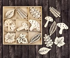 Wood Icons in a Box - Leaves and Mushrooms