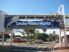 Underwater World - Mooloolaba