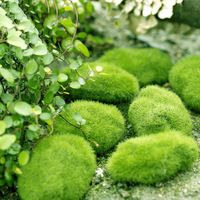100pcs Foam 3/5/6/8/9cm Wedding Home Office Furniture Decor Artificial Bryophytes Grass Moss Rocks for Bonsai Flower Vase Green
