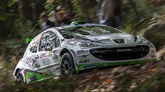 Giandomenico Basso - Shakedown Rally di San Remo 2013 by stefano.casi