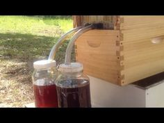 FlowHive Offers Honey-On-Tap - No Smoke, No Suit, Just Happy Bees