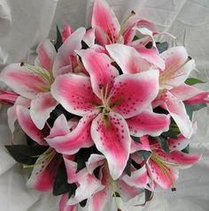 Oriental Got them on Valentine's Day and they are still growing strong and re-sprouting. Stargazer Lily Bouquet, Oriental Lily, Flower Names, Wedding Flowers, Wedding Bouquet, Wedding Dress, Day Lilies, Flowers Nature, Floral Bouquets