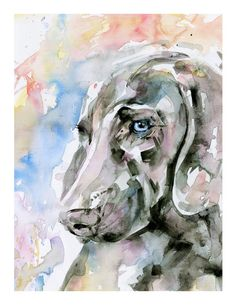 """Weimaraner Dog Painting, Dog portrait Pet art archival Gicl�e print from original""""Blue Eyes by Kathy Morton Stanion EBSQ"""