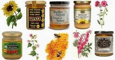 Ottawa Valley Dog Whisperer : Honey Good for Dogs, Cats - Honey is a Natural, Healthful, Healing Food