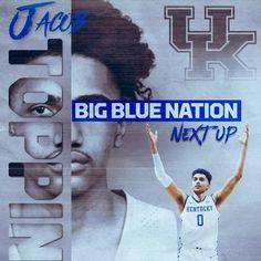 Kentucky Basketball, Kentucky Wildcats, Uk Football, Baseball Cards, Blue, Twitter, Sports, British Football, Hs Sports