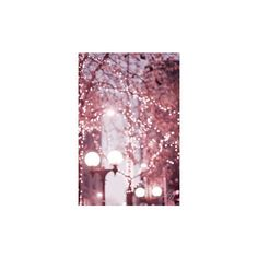 Pinterest ❤ liked on Polyvore featuring backgrounds, pink, christmas, pictures and filler