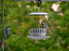 CoffeeKlatsch for tit, sparrow and finch. A bird feeder made of dishes for the beautiful animals. Each feeder is unique. The coffee service are vintage and therefore have signs of use.