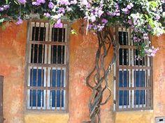 Fenêtre, Vieux, Hauswand