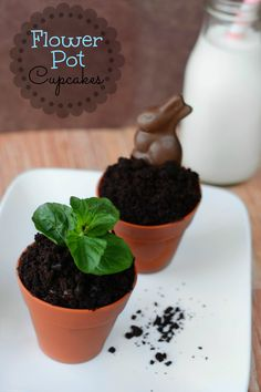 Easter Flower Pot Cupcakes