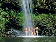 guests swim in waterfall on maui adventure tour