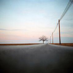Shooting Film: Stunning Photographs from Kodak Ektar 100 Kodak Ektar, Single Tree, Lone Tree, Shoot Film, Photo Tree, New Journey, Film Photography, Modern Photography, So Little Time