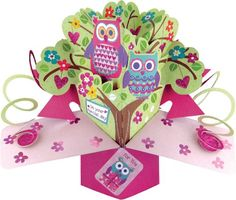 £4.80 Second Nature A Female On Your Special Day with Owls On A Branch Pop Up Greeting Card Second Nature http://www.amazon.co.uk/dp/B00HDEXKNK/ref=cm_sw_r_pi_dp_Tatdwb0RDZW8X