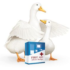 aflac duck accident commercial