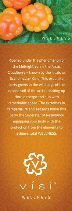 supplement-facts   http://visicanada2.govisi.com