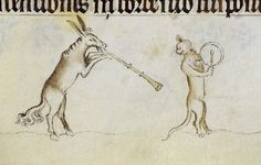 This cat should NEVER have asked that donkey to join the band.